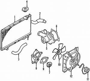 Chrysler Sebring Radiator Coolant Hose  2 0 Liter
