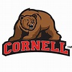 This is a design I made of the mascot of Cornell ...