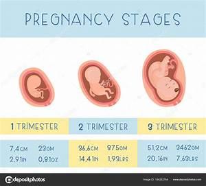 Schwangerschaft 3 Trimester : zhannamay27 184263754 ~ Frokenaadalensverden.com Haus und Dekorationen