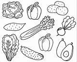 Coloring Pages Vegetables Vegetable Fruit Results Gardens sketch template