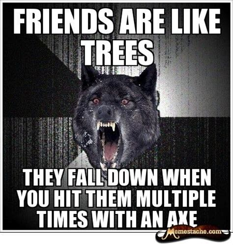 Mad Wolf Meme - insanity wolf meme them funny here are 10 of the best exles of the insanity wolf meme