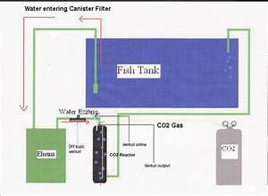 Freshwater Aquarium Plant Care  Substrate  Ferts  Co2