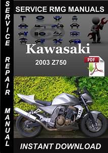 2003 Kawasaki Z750 Service Repair Manual Download