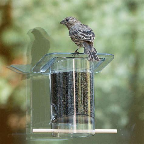 amazon com perky pet 349 k feeder window wild bird