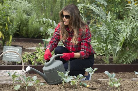 Melania Trump diet plan: What food the US First Lady eats in a day | Express.co.uk