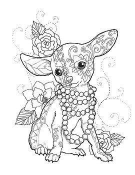 Chihuahua elegante por Cindy Elsharouni | Drawings