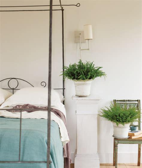 plante pour chambre plante verte chambre a coucher atlub com