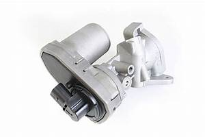 Exhaust Gas Recirculation - 2 4 Tdci