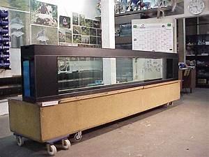 Aquarium Als Raumteiler : raumteiler aquarium aquarienbau hamburg hartkopp ~ Michelbontemps.com Haus und Dekorationen