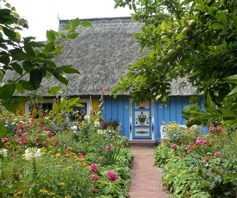 Colorful Curb Appeal Landscaping Ideas