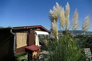 Dachrinne Für Gartenhaus : eine dachrinne f r das gartenhaus gartenhaus abc ~ Frokenaadalensverden.com Haus und Dekorationen