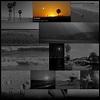 Justified Image Grid - Premium WordPress Gallery by Firsh ...