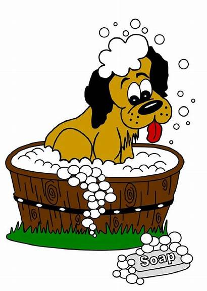 Dog Clipart Grooming Groomer Clip Pet Washing