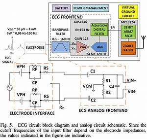 Ecg Circuit Block Diagram And Analog Circuit Schematic
