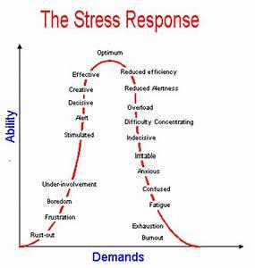 15 Ways to Manage Trader Stress   New Trader U