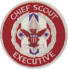 chief scout executive wikipedia