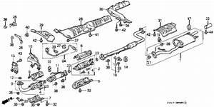Honda Online Store   1996 Accord Exhaust Pipe   U0026 39 95