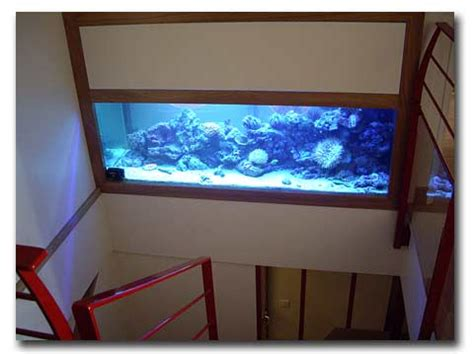 chambre des enfants un aquarium dans un escalier