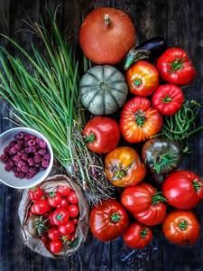 Comment Tuteurer Les Tomates : comment conserver les tomates ~ Melissatoandfro.com Idées de Décoration