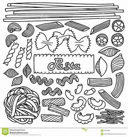 Pasta Types Different Vector Illustration Backgrounds Menu