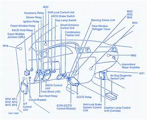 96 Nissan 200sx Engine Diagram Wiring Diagram Thick Shift Thick Shift Lechicchedimammavale It