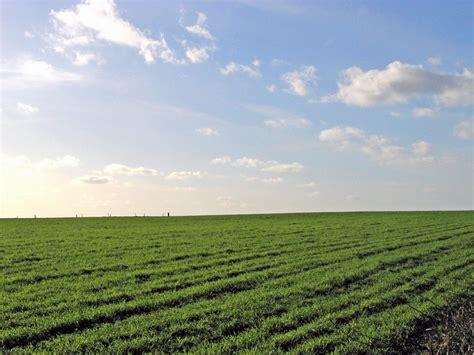 Land Grabbing in developing countries | Agraz Blog