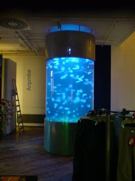aquarium sur mesure jellyfish concept