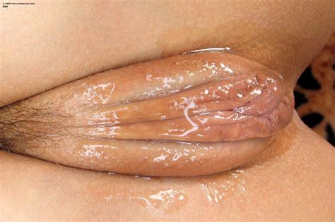 Jelly Pussy Porn Photo Eporner