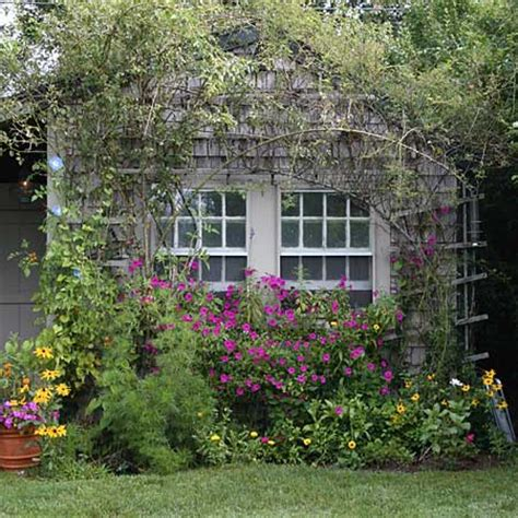 Dr Dan's Garden Tips The Charm Of Cottage Gardening