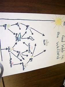 Practice Fun 55 Diagram Puzzle Answers