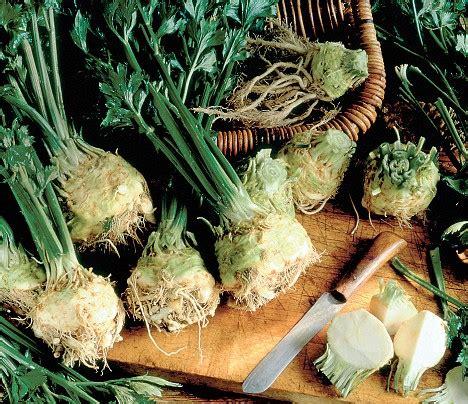 alimenti lassativi contro la stitichezza stitichezza rimedi naturali