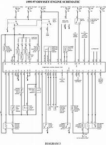 2000 Honda Passport Fuel Pump Wiring Diagram