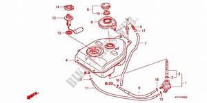 Fuel Tank For Honda Scoopy 110 Fi 2016   Honda Motorcycles