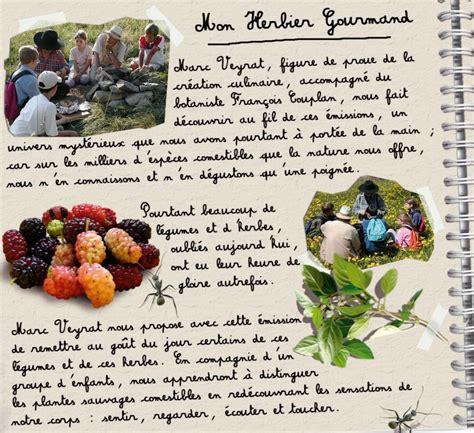 cuisiner ortie l herbier gourmand de marc veyrat gtv productions