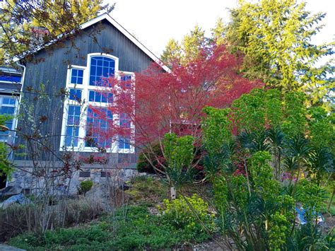 cottage lake gardens bed and breakfast in woodinville
