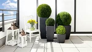 DALANI Vasi alti da esterno: per un outdoor elegante