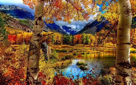 Autumn Wallpapers Free by 21 Autumn Backgrounds Fall Wallpapers Pictures Images