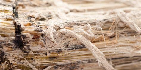 nyc juries award    june asbestos trials