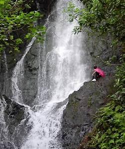Hawaiian Waterfall Hike Oahu Nature Tours Hawaii Discount