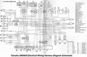 Wiring Diagram Yamaha Tzr 50