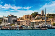 The Festival de Cannes through the city's cinematic wall ...