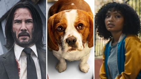 theaters john wick chapter   dogs journey