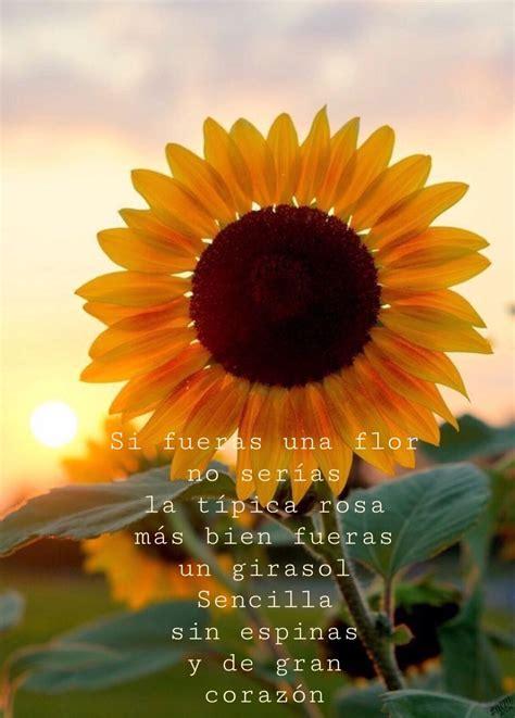 Si fuera una flor 💛 Frases girasoles Girasoles Frases