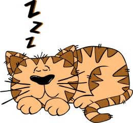 Image result for sleeping cat cartoon