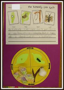 Third Of Life : today in first grade the butterfly life cycle and ~ A.2002-acura-tl-radio.info Haus und Dekorationen