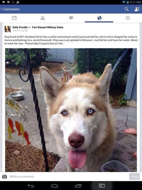 Aaron / erin / karen / sharon June 22 Found female named Aurora in Ft Stewart, Georgia ...