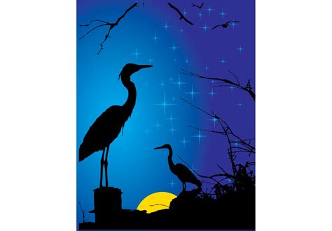 stork vector   vector art stock graphics