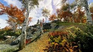 4k, Fall, Forest, At, Skyrim, Nexus
