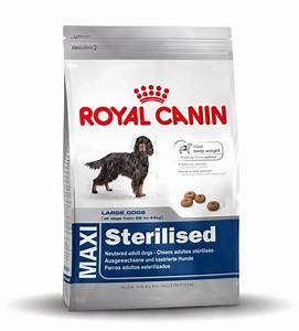 Royal Canin Maxi Adult : royal canin maxi adult sterilised ~ Eleganceandgraceweddings.com Haus und Dekorationen
