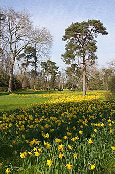 pavasaris - Wiktionary